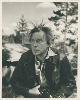 Arnold Sjöstrand - image 23