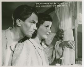 Birger Malmsten - image 273