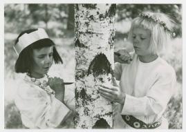 Sotlugg och Linlugg - image 1