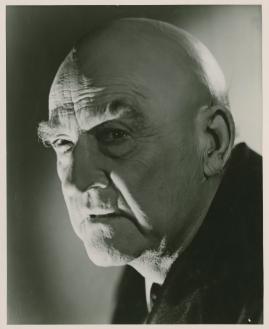 Victor Sjöström - image 35