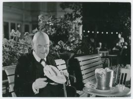 Victor Sjöström - image 36