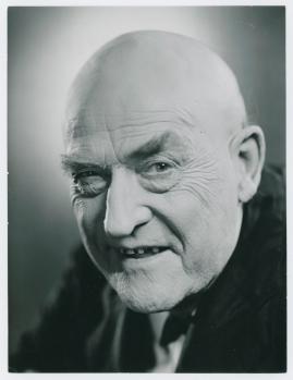Victor Sjöström - image 22