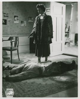 Kvinnan som försvann - image 25