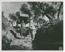 Elof Ahrle - image 72