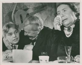 Mona Geijer-Falkner - image 11