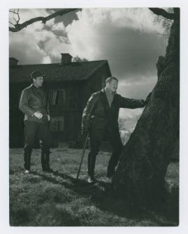 Ulf Palme - image 24