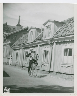 Pippi Långstrump - image 55