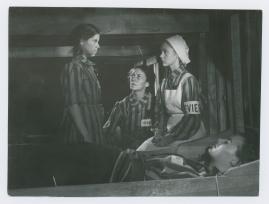 Ilselil Larsen - image 21