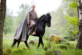 Arn - The Knight Templar - image 349