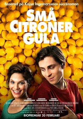 Små citroner gula - image 2