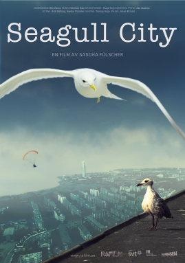 Seagull City - image 1