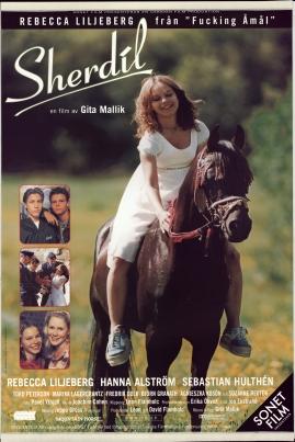 Sherdil - image 1