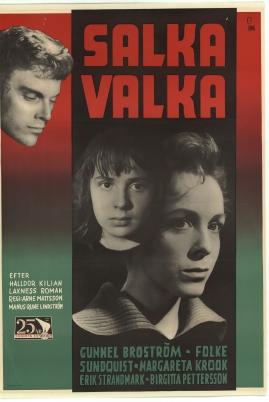 Salka Valka - image 2