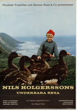 Wonderful Adventures of Nils - image 2