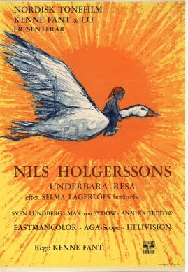 Wonderful Adventures of Nils - image 1
