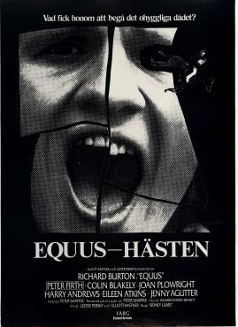 Equus - hästen